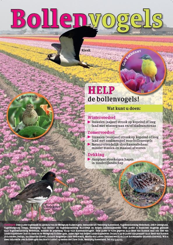 Help de bollenvogels